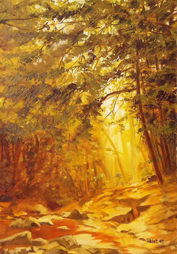 Claude Pelet Artiste Peintre - Trou de lumière