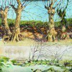 Claude Pelet Artiste Peintre - Platanes sur les berges du Vidourle